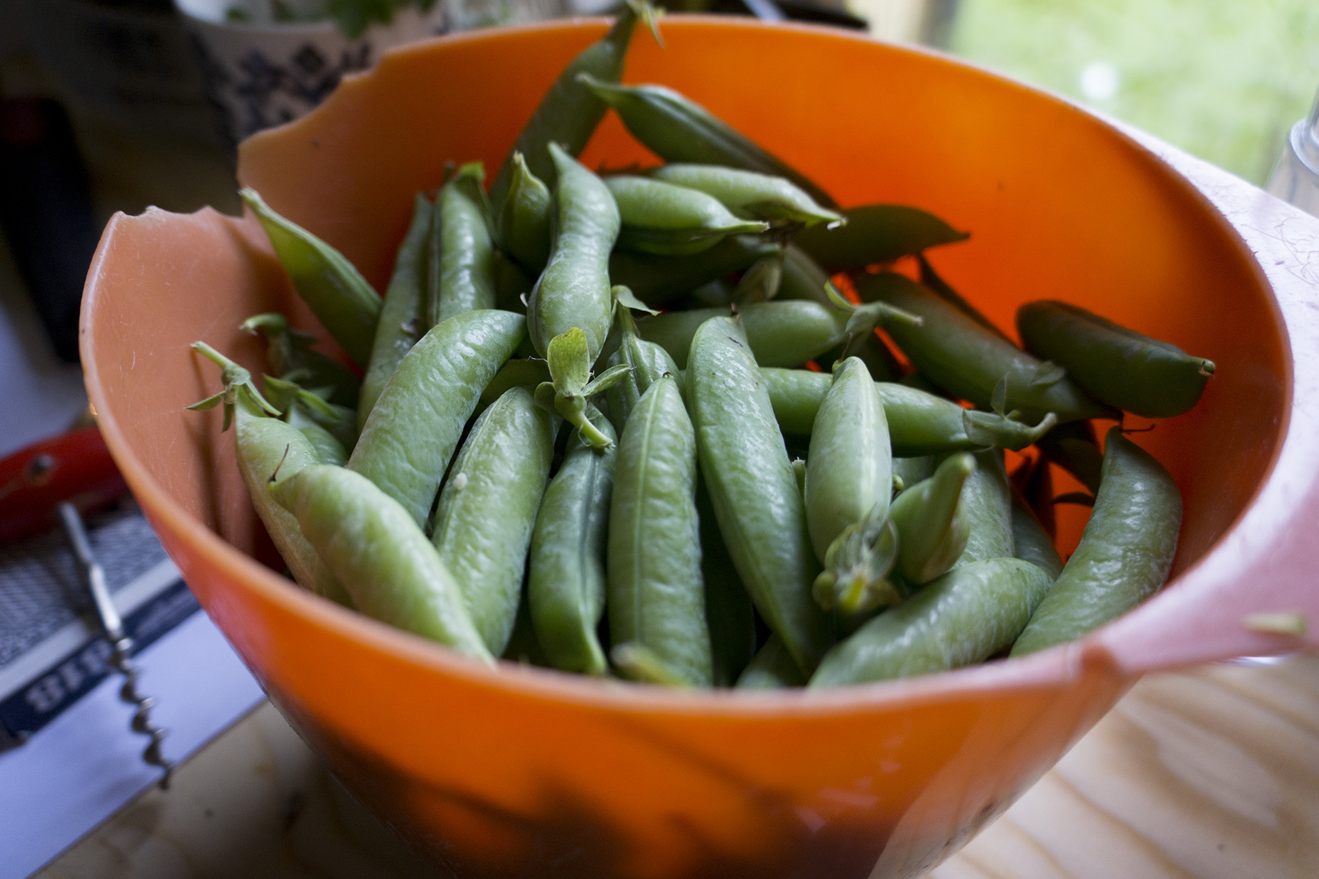 Organic grown peas ready to eat