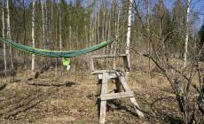 hammock at Beyondbuckthorns